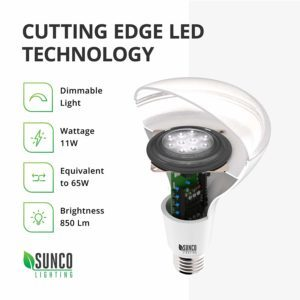 cool white dimmable led bulbs