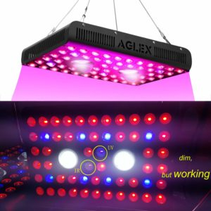 led cob grow light