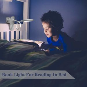 Best Light Color For Reading At Night