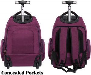 HollyHOME Rolling Backpack