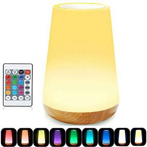 ROYFACC LED Touch Lamp