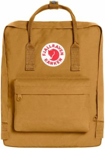 Best Fjallraven Backpack