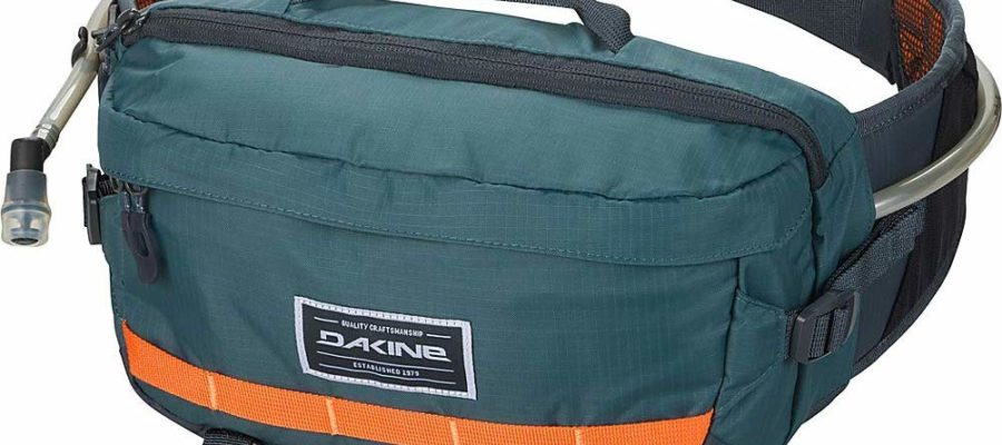 dakine bike travel bag