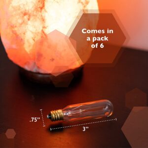 himalayan salt light bulb