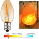 Top 10 Best Bulb for Salt Lamp (2021 Reviews)