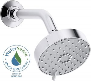 best kohler shower head