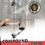 Top 10 Best Compound Bows Under 200 (2021 Reviews)